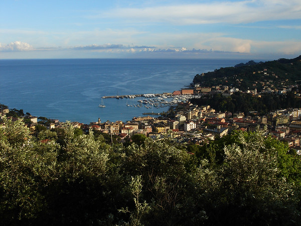Santa Margherita from House Road